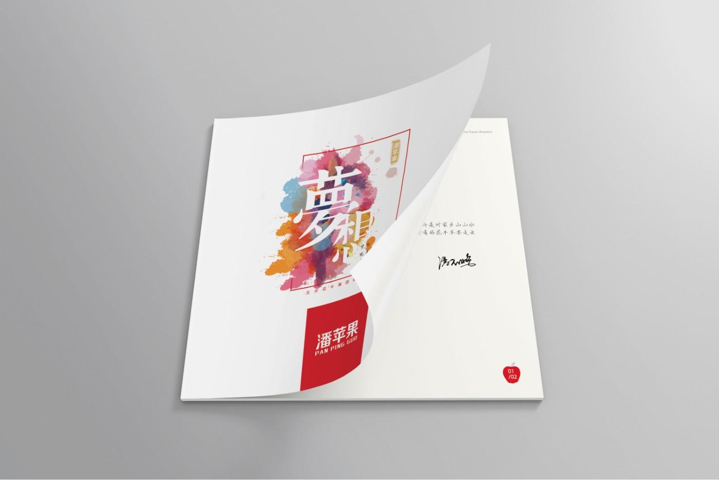 潘苹果<a href='http://www.6chuangyi.com/' title='' style='color:;font-weight:bold'>品牌策划</a>09.jpg