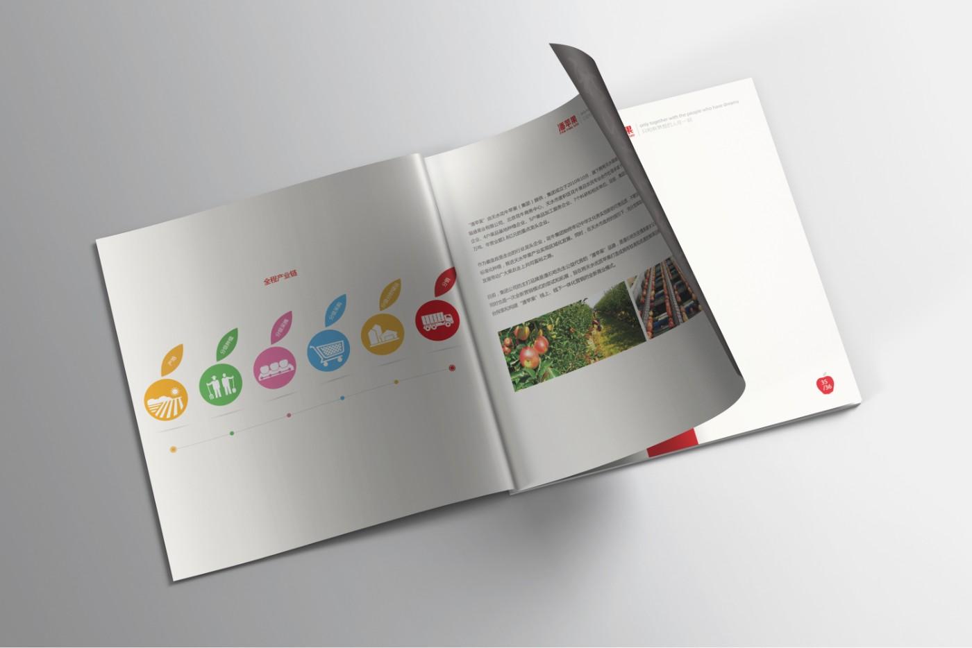潘苹果<a href='http://www.6chuangyi.com/' title='' style='color:;font-weight:bold'>品牌策划</a>10.jpg