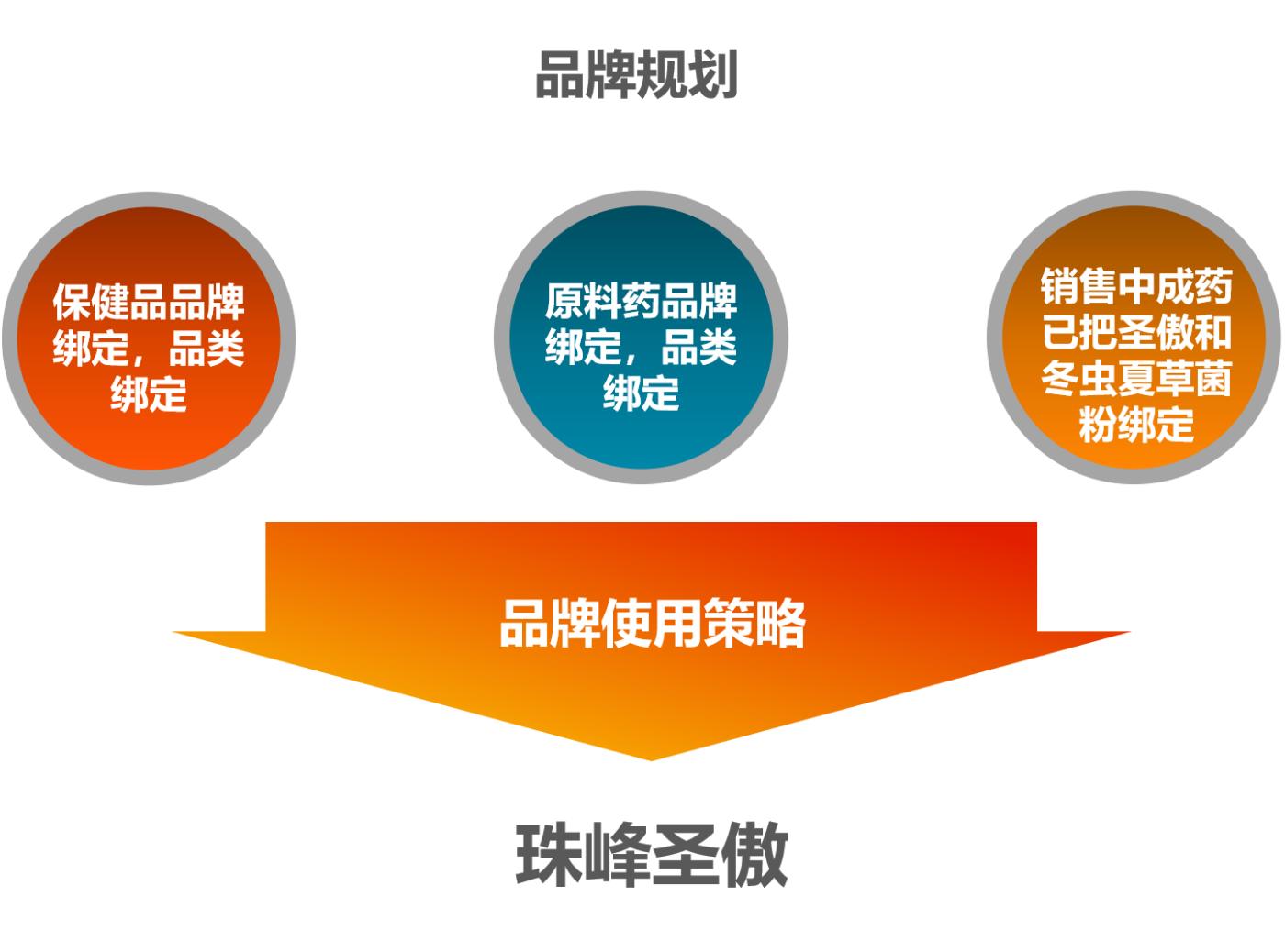珠峰圣傲<a href='http://www.6chuangyi.com/' title='' style='color:;font-weight:bold'>品牌策划</a>06.png